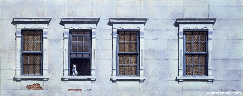 Fenêtres Et Chat